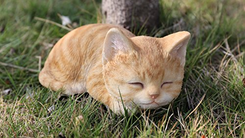 Hi- Line Gift 87699-A Kitten Sleeping Orange Tabby Cat Statue ()