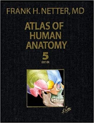 Atlas pdf netter edition of frank human anatomy 5th
