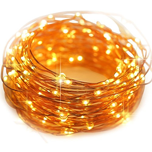 HAHOME Waterproof Led String Lights,33Ft 100 LEDs Indoor and Outdoor Starry Lights with Power Supply for Christmas Wedding and Party Decoration,Warm (Party Supplies)