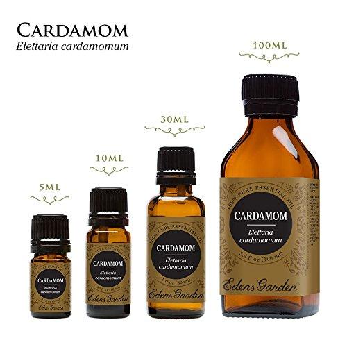 Cardamom 100% Pure Therapeutic Grade Essential Oil by Edens Garden- 100 ml