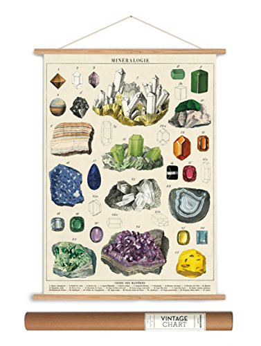 Cavallini Papers Vintage Style Decorative Poster & Hanger Kit 20 x 28, 20