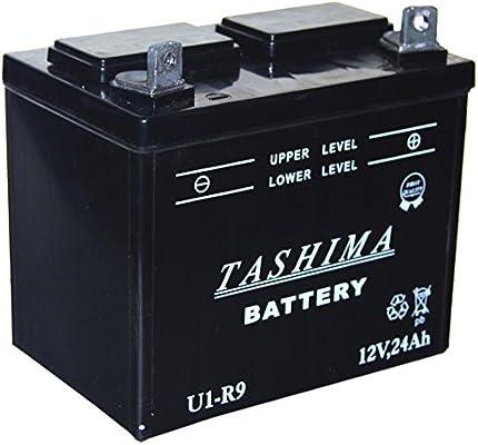 Greenstar 13198 batería para cortacésped U1R F506: Amazon.es ...