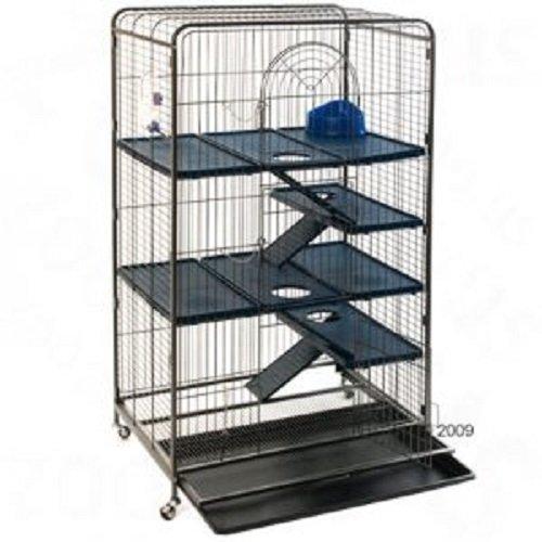 Rata, hurón, ardilla, y jaula de Chinchilla: Amazon.es: Productos ...