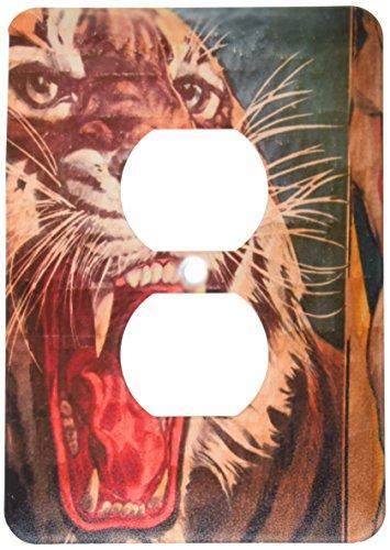 3dRose LLC lsp_89300_6 Florida, Sarasota, Ringling Museum, Circus Museum Us10 Wbi0588 Walter Bibikow 2 Plug Outlet Cover