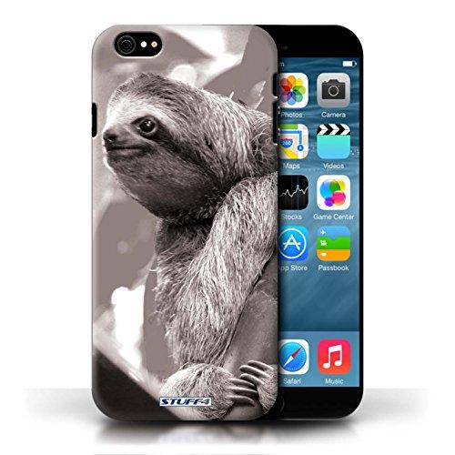 Kobalt® protector duro de nuevo caso / cubierta para el Apple iPhone 6/6S   Pereza Diseño   Animales de zoológico mono colección