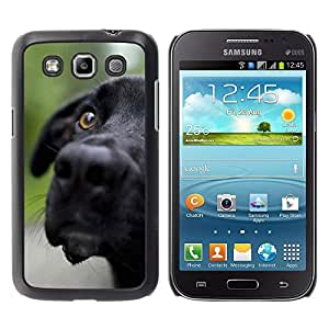 Be Good Phone Accessory // Dura Cáscara cubierta Protectora Caso Carcasa Funda de Protección para Samsung Galaxy Win I8550 I8552 Grand Quattro // Black Labrador Retriever Muzzle Dog