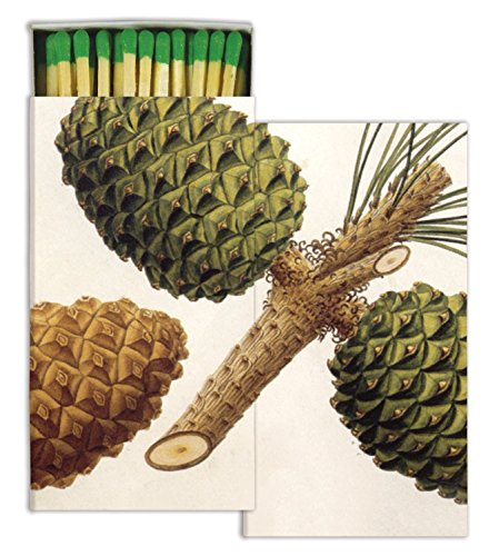Matches - Pinecones (Set of 3)