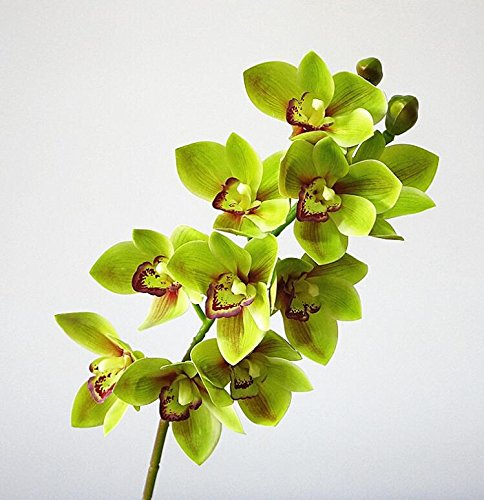 2pcs PU phalaenopsis Orchid 3D Printing Cymbidium Plant Artificial Real Touch Pink Color Butterfly Orchid for Wedding Centerpieces Decorative Flowers (green)