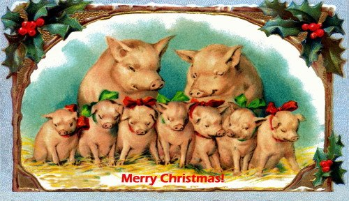 Antique Christmas Art~PIg Family with 7 piglets wearing Red & Green Bows~Holly~6 pack NEW Matte Vintage Picture Large Blank Note Cards with Envelopes