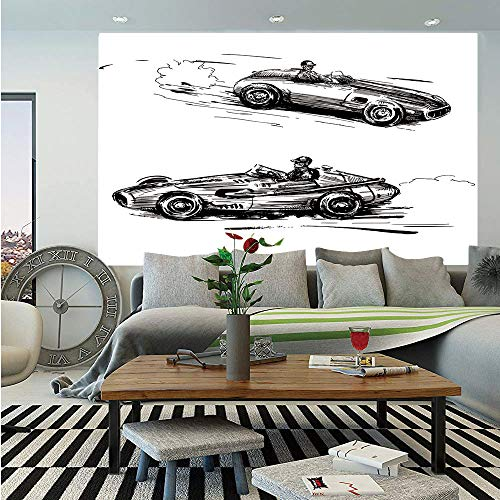 (Cars Removable Wall Mural,Vintage Racing Cars Hand Drawn Style Collection Nostalgic Automobile Sketch Artwork Decorative,Self-Adhesive Large Wallpaper for Home Decor 66x96 inches,Black White)