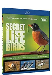 Secret Life of Birds - Blu-ray