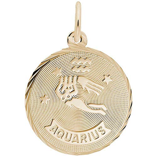 - Rembrandt Charms Aquarius Charm, Gold Plated Silver