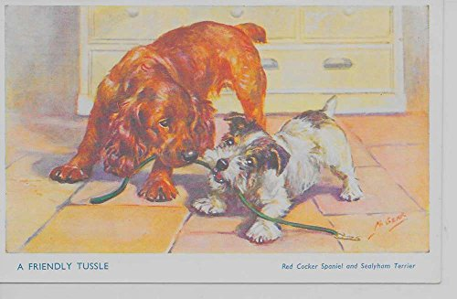 Terrier Antique (A Friendly Tussle red Cocker Spaniel and Sealyham Terrier antique pc Z23772)