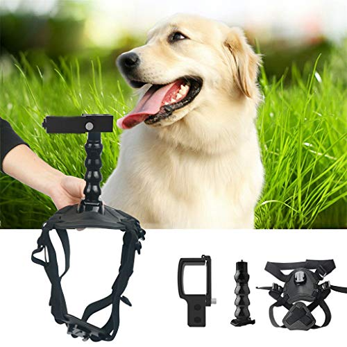 Amaping Following Up Photographing Fixture for Pet Chest Back Mount Strap Shoot Picture for DJI OSMO Pocket Camera (Black) (Flashing Strap Neck Lanyard)