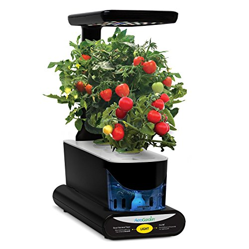 aerogarden sprout review