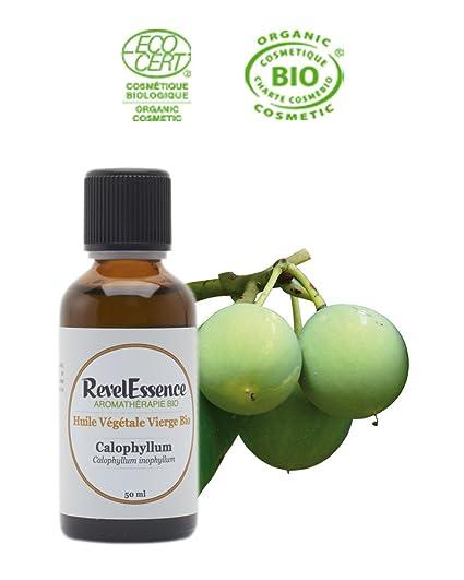 huile vegetale de kiwi