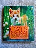 Cat's Kingdom, Jeremy Angel, 0446513679
