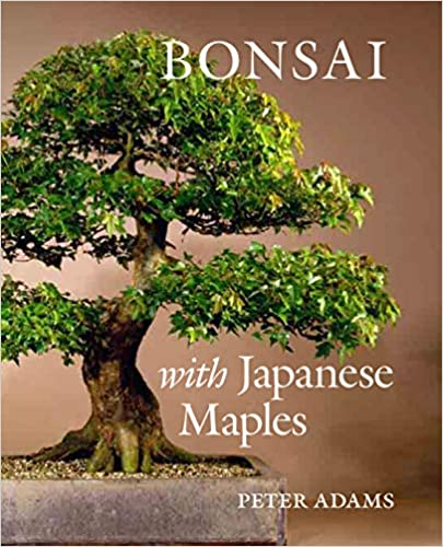 Bonsai With Japanese Maples Adams Peter 9780881928099 Amazon Com Books