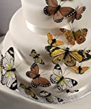 Beautiful Butterfly Cake Sets - Natural Elegance