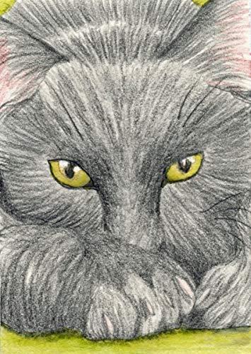 ACEO ATC Black Kitty Cat Pet Colored Pencil Art Original -Free Shipping-Carla Smale