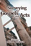 img - for Surveying the Gospels and Acts (Surveying the New Testament) (Volume 1) book / textbook / text book