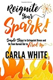 Reignite Your Spark: Simple Steps to Extinguish Stress and go from Burned Out to Fired Up