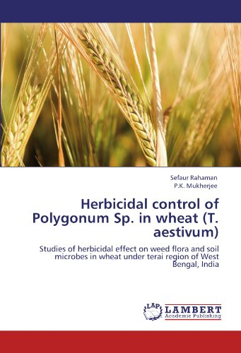 herbicidal-control-of-polygonum-sp-in-wheat-t-aestivum-studies-of-herbicidal-effect-on-weed-flora-an