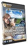 Lynda Photoshop Tutorial