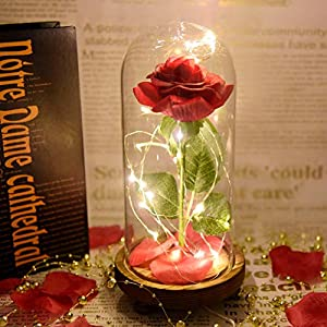 Gotian Beauty and The Beast Romantic Simulation Rose Glass Cover Led Landscape - The Classic Begins with The Classic - Suitable for Home Decoration 8