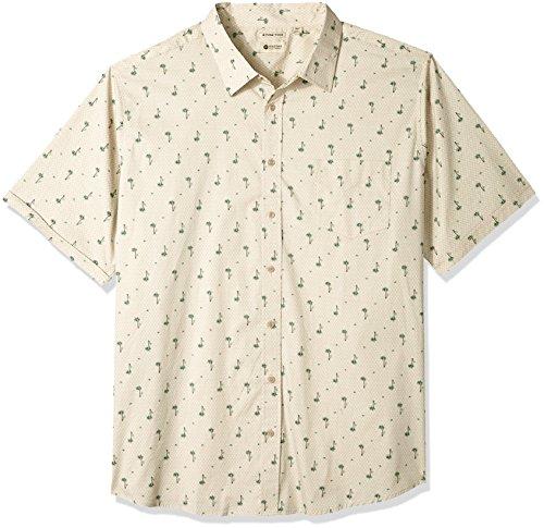 Print Ecru (Haggar Men's Tall Short Sleeve Micrographic Prints Woven Shirt, Ecru/Palm Tree, 2X Big)
