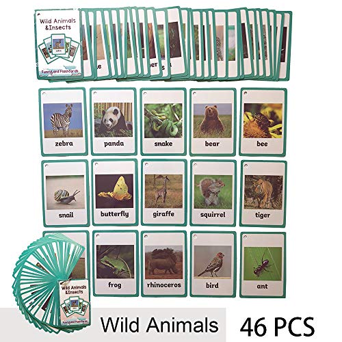 Richardy 46PCS/Set Wild Animals&Insects Kids Gifts English Flash Cards Pocket Card Educational Learning Baby Toys For Children Pre-Kindergarten (Insect Playing Cards)