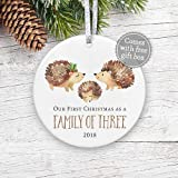 """First Christmas as Family of Three 2018 Ornament, Baby's 1st Christmas Ornament, Watercolor Gender Neutral Baby Shower Gift New Baby - 3"""" Flat Ceramic Ornament - Gold & Silver Ribbon + Free Gift Box"""