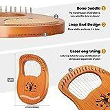 Topnaca Lyre Harp, 16 Metal string Mahogany Plywood