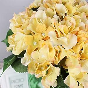 Lannu Artificial Silk Hydrangea Flowers Fabric Floral Natural Fake Hydrangea Flower Wedding Home Flower Wall Decor Pack 2 ... (7 Heads Champagne) 5