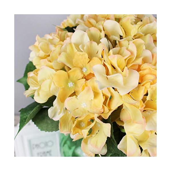 Lannu-Artificial-Silk-Hydrangea-Flowers-Fabric-Floral-Natural-Fake-Hydrangea-Flower-Wedding-Home-Flower-Wall-Decor-Pack-2–7-Heads-Champagne