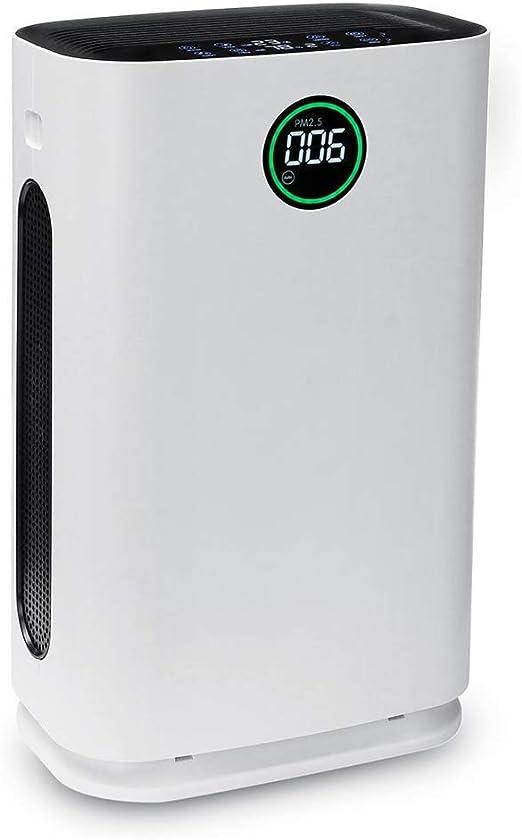 HWHS219 Purificador De Aire De Sala Grande Filtro HEPA Olor Fácil ...