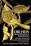 Orchids of Guatemala and Belize