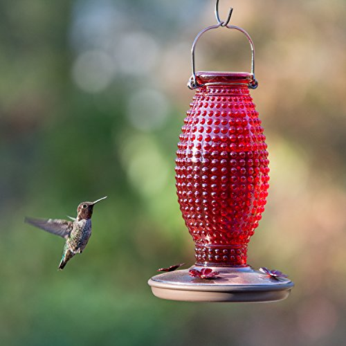 Perky-Pet Red Hobnail Vintage Glass Hummingbird Feeder 8130-2 by Perky-Pet (Image #5)