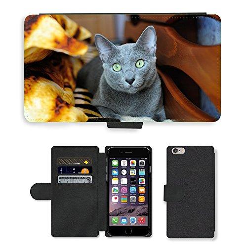 "Just Phone Cases PU Leather Flip Custodia Protettiva Case Cover per // M00128224 Cat Chaton Animaux familiers Gris // Apple iPhone 6 PLUS 5.5"""