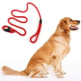 Mountain Climbing Rope Dog Leash - 4 ft and 6 ft Available - Premium Quality - Perfect for Medium and Large Breeds (gules)