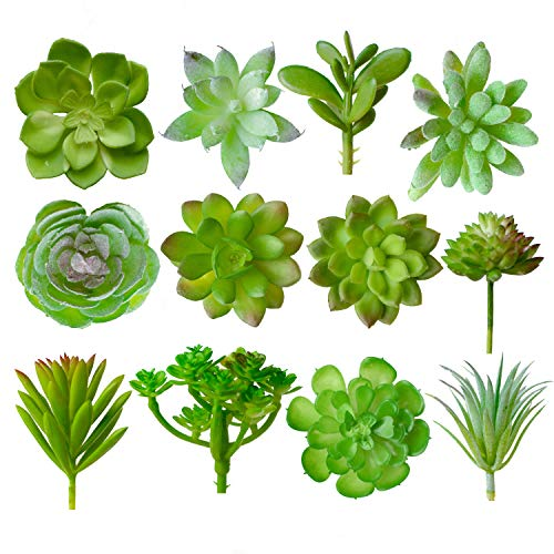 SimplePlants 12 Piece Artificial Succulent Plants | Mini Fake Succulents for Home Décor and Indoor Wall Garden | Faux Unpotted Succulent Picks for Arrangements