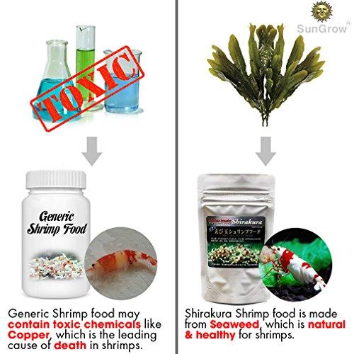 SunGrow Shirakura Shrimp Food Made Organic Seaweed Rich in Vitamins Minerals Provides Optimum Health Shrimp, Crayfish, Pleco, Snail & Bottom feeders by SunGrow (Image #2)