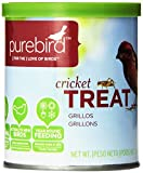 PureBird Cricket Treat for Wild Birds, 2.4-Ounce
