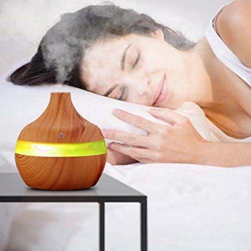 Top 10 purifier humidifier diffuser combo for 2019