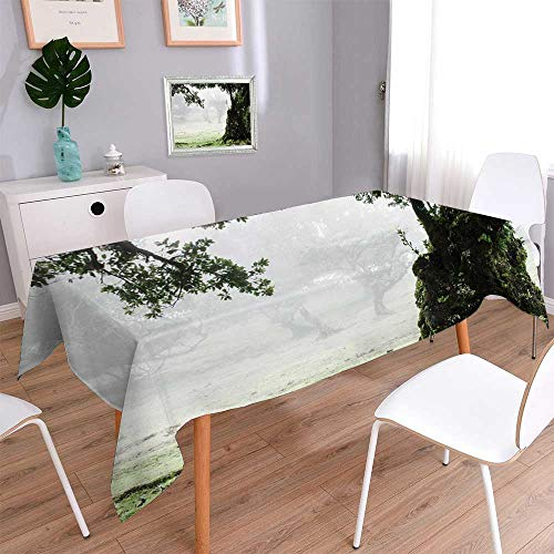 - PINAFORE HOME Linen Square Tablecloth Fairy Forest Laurel Forest in Madeira Linen Cotton Tablecloths for Kitchen Room/Rectangle, 70 x 120 Inch