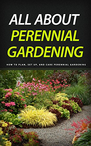 All About Perennial Gardening How To Plan Set Up And Care