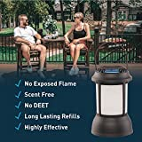 Thermacell Mosquito Repellent Patio Shield Lantern