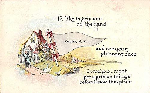 Flag Cottage - Cuyler New York Greetings Pennant Flag Cottage Ducks Postcard JD933423