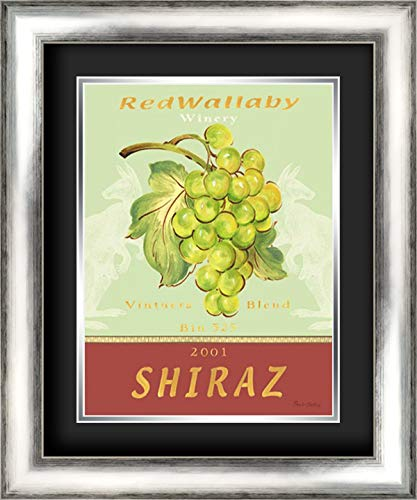 Shiraz 20x24 Silver Contemporary Wood Framed and Double Matted (Black Over Silver) Art Print by Gladding, Pamela