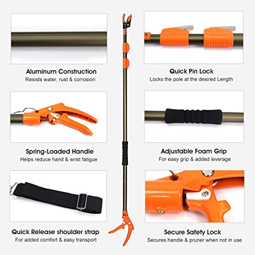 Finether Telescopic Pole Saw Long Reach Pole Pruner Lightweight Tree Trimmer with Bypass Pruner, Saw Blade, Guide Rod |Work Gloves for Free | Extends from 5.91 to 13.12 ft by Finether (Image #1)